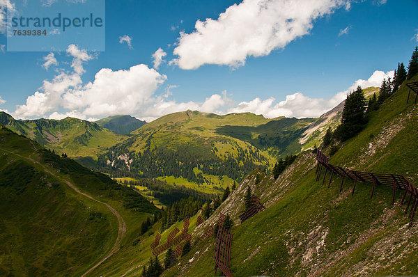 Europa ,Schutz ,Alpen ,Österreich ,Vorarlberg,Europa ,Schutz ,Alpen ,Österreich ,Vorarlberg