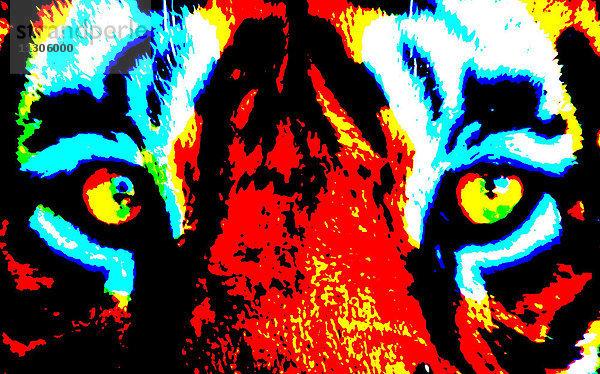 Augen,Gesicht,Konzept,kreativ,Tiger,verfremdet