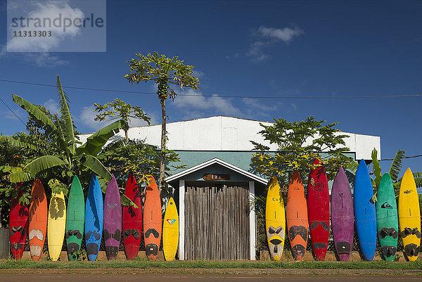 Amerika,Boards,bunt,Farbe,Haus,Hawaii