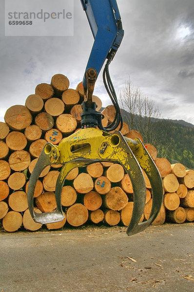 Baggerbauholzeuropaholzpflückersägewerktransportvorarlberg