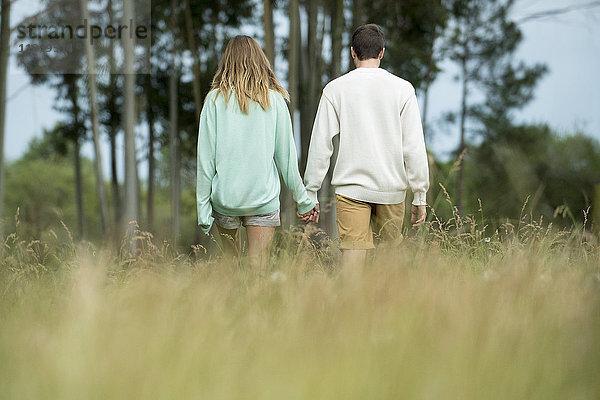Paar geht gemeinsam durch hohes Gras, Rückansicht