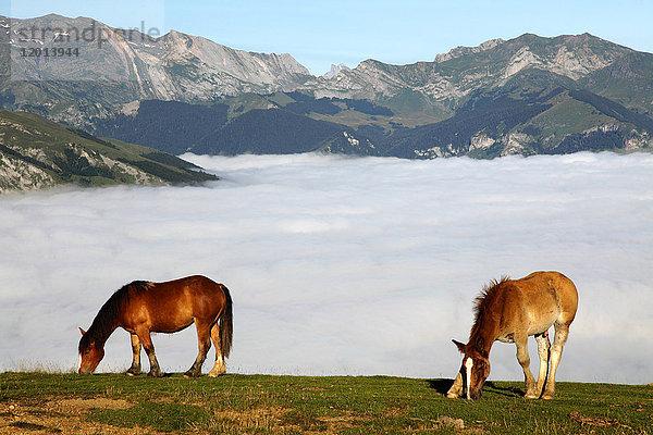 Aquitanien,Atmosphäre,Außenaufnahme,Berg,Berggipfel,blauer Himmel