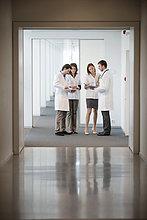 Vier Ärzte untersuchen medizinische Gutachten