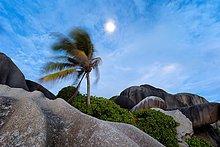 beugen,Landschaft,Wind,Mond,Ansicht,unterhalb,voll,Seychellen