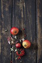 Blüten von Hortensien, Feuerdorn und roten Äpfeln auf dunklem Holz